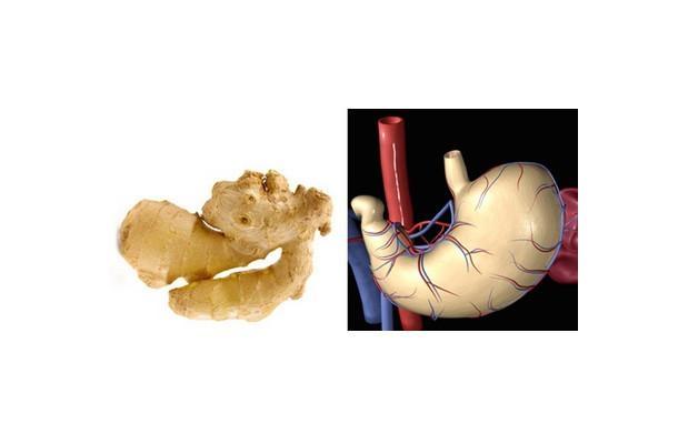 Benzediği organa iyi geldiğini kanıtlayan 10 yiyecek galerisi resim 1