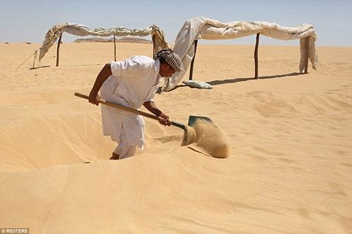 Kendilerini kuma gömüyorlar çünkü... galerisi resim 1