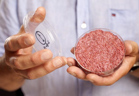Laboratuvarda üretilen sığır eti 'görücüye' çıktı