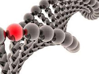1 SAATTE DNA TESTİ!