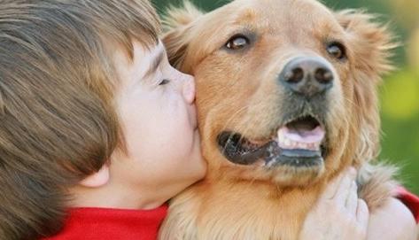 Çocuklarla en iyi anlaşan 10 köpek türü..