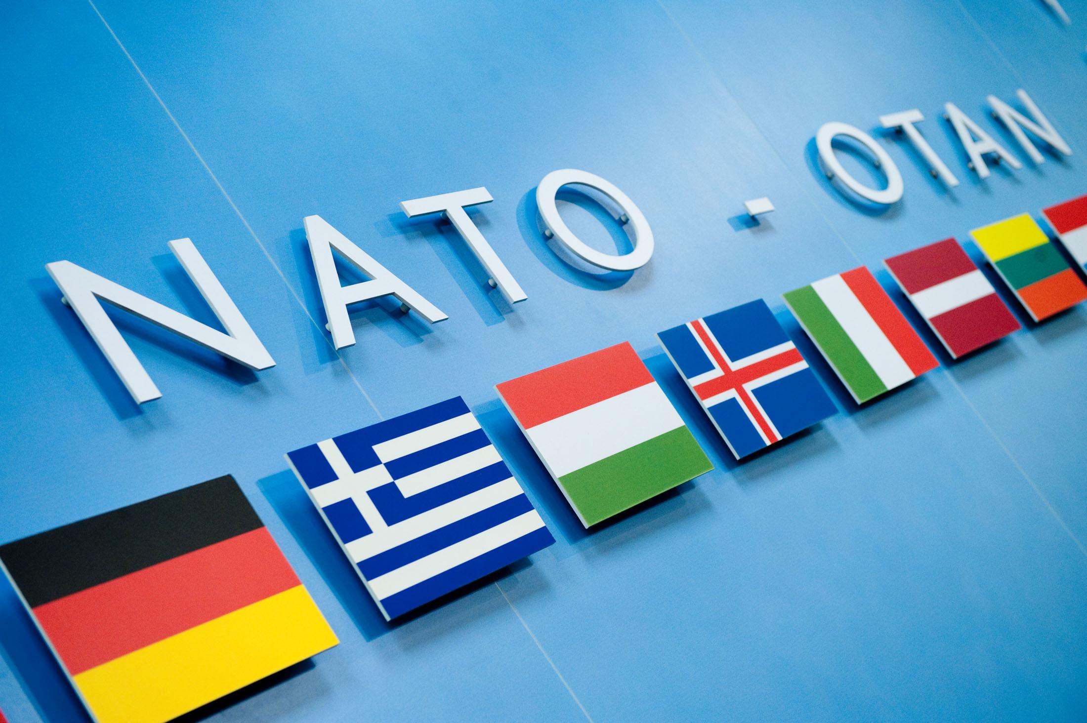 """NATO'YA KATILIM RUSYA İLE İLİŞKİLERİ ETKİLEMEZ"""""""