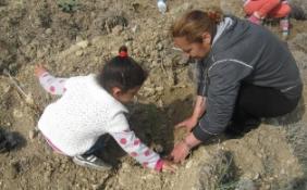SOS ÇOCUKKÖYÜ DERNEĞİ HAMİTKÖY'DE FİDAN DİKTİ