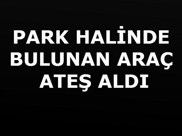 PARK HALİNDE BULUNAN ARAÇ ATEŞ ALDI