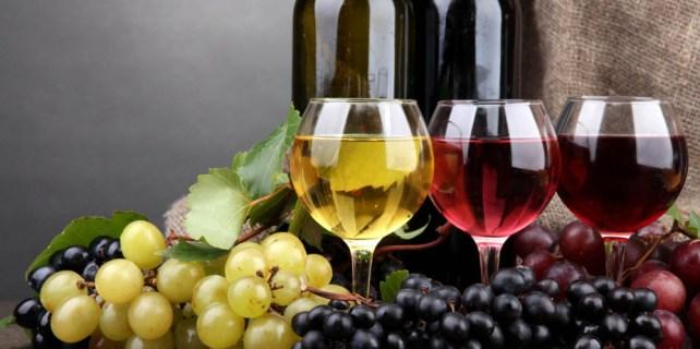 Meraklısına şarap hakkındaki bilinmeyenler