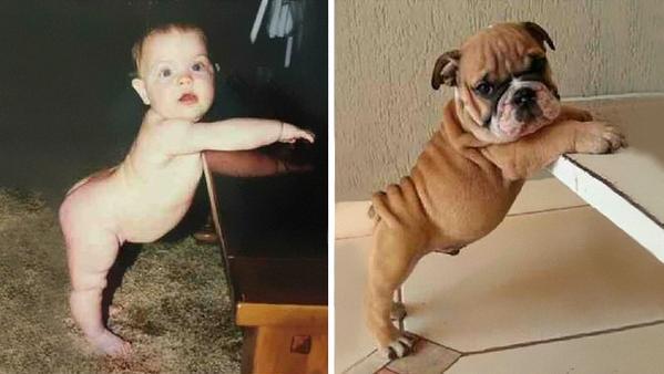 Şaşırtan benzerlikler