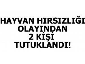 HAYVAN HIRSIZLIĞINDAN 2 KİŞİ TUTUKLANDI!