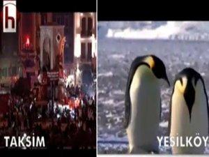 PENGUENLİ GÖNDERME!