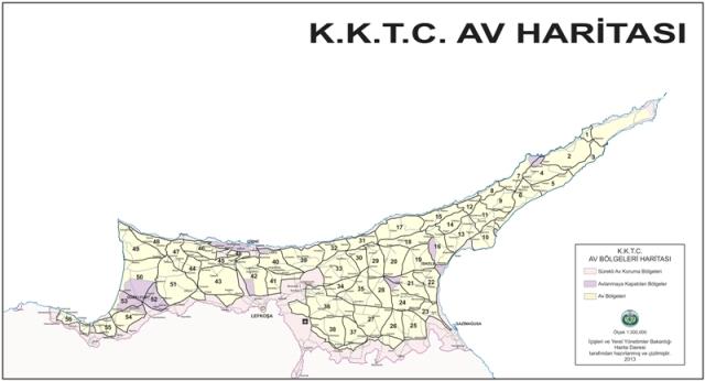 av-haritasi.jpg