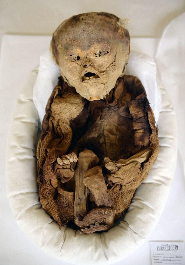 bin-yillik-mumyalanmis-bebek-cesedi-saskina-7101817_9549_m.jpg