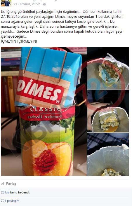 dimes-in-001.jpg