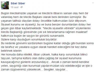 siber.png